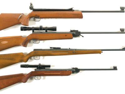 عرض بندقية صيد رقم 2